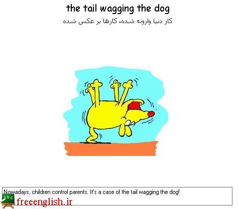 کار دنیا وارونه شده است the tail wagging the dog