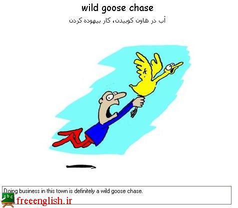آب در هاون کوبیدن wild goose chase